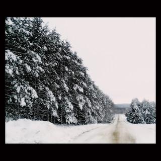 Wix Archive Winter RoadSquare.jpg