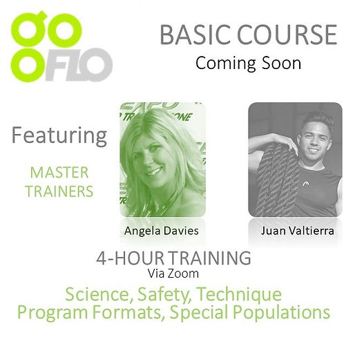 ONLINE GOFO BASIC COURSE
