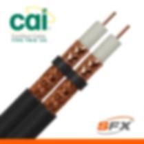 CAI 100 TWIN.jpg