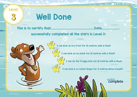 Certificate - Level 3