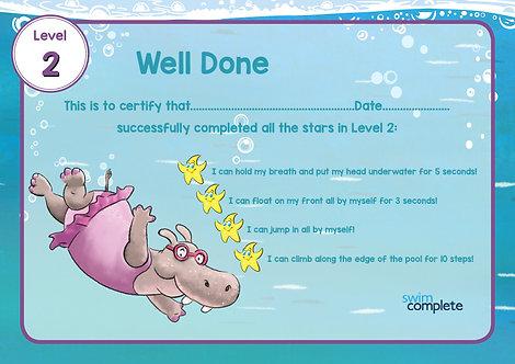 Certificate Level 2