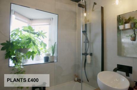 PLANTS £400