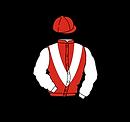 MLT Logo copy.png