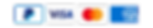 icone-moyen-paiement-footer copy.png