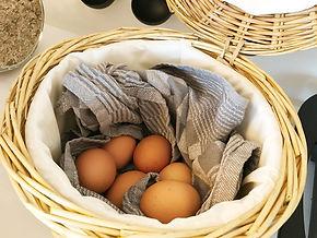 Verse gekookte eitjes bij het ontbijt bij Bed and Breakfast Reeburg.
