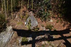 otsuchi new years day monkey at shrine wide straight on.JPG