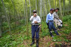 marumori bamboo farmers watch govnt testing.JPG
