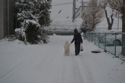 sendai after snow mom and child walk.JPG