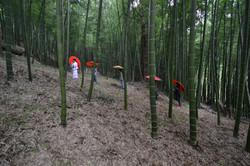 fukushima moms procession scene in contaminated bamboo forest.JPG