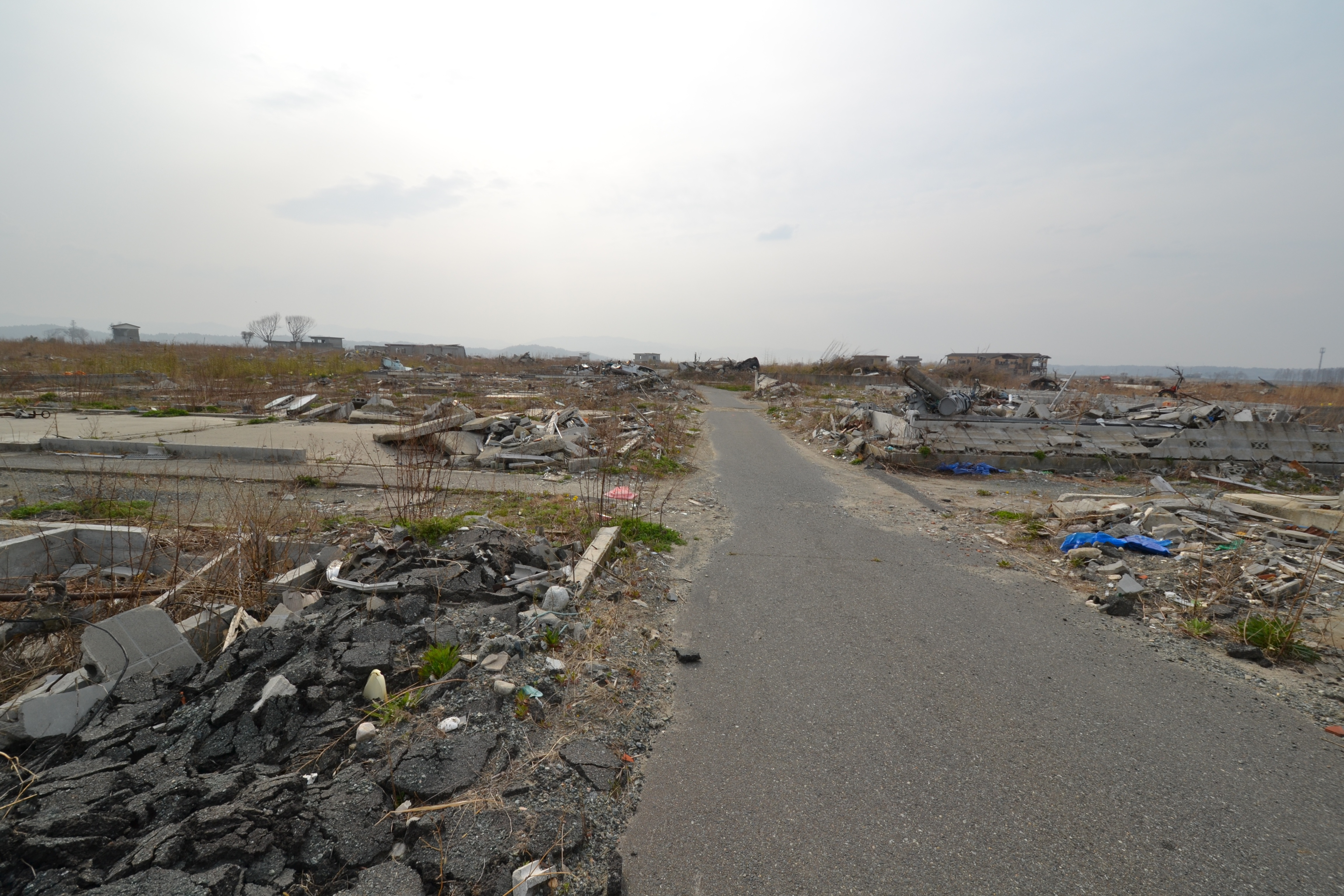 namie tsunami area street.jpg