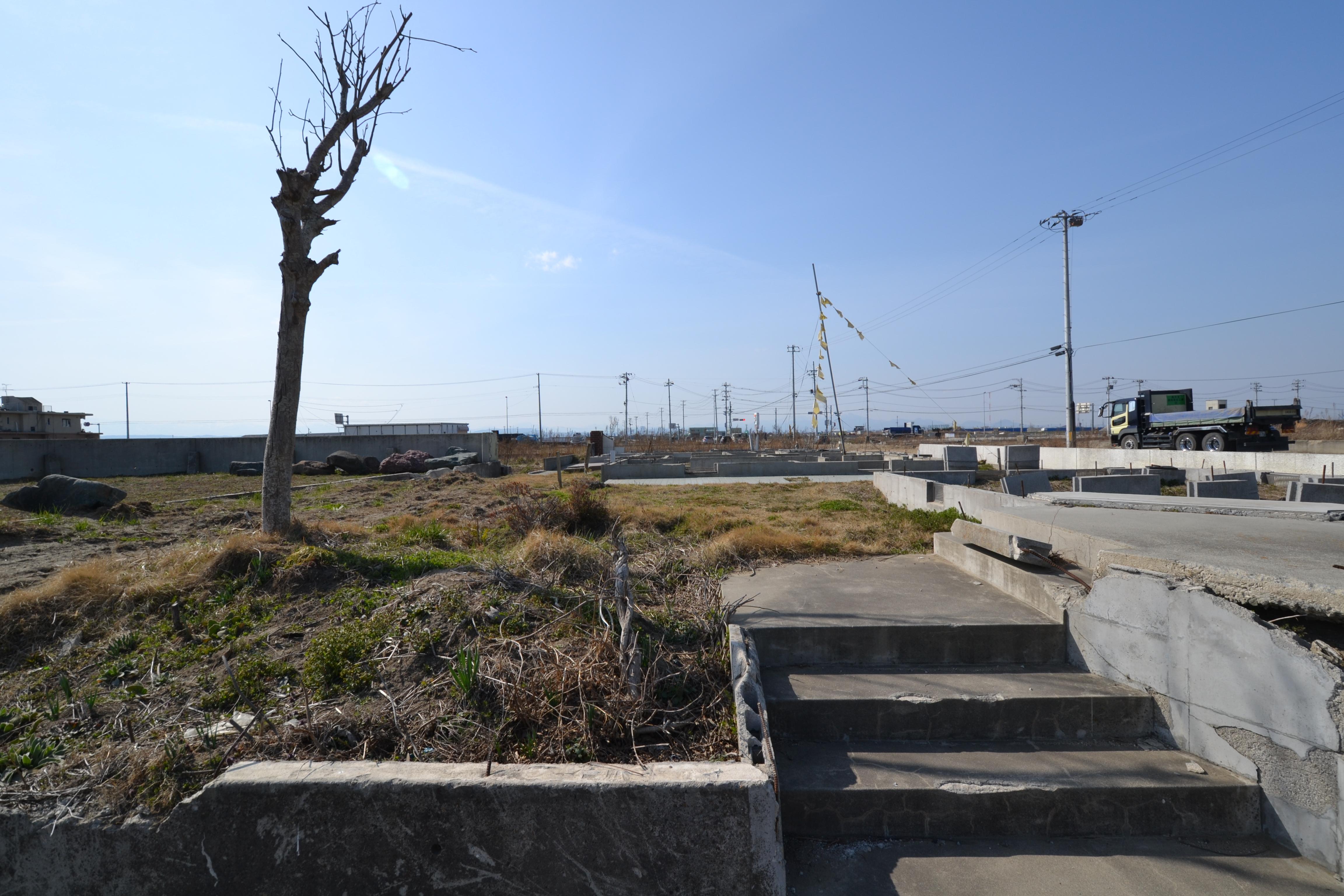 arahama tree, steps no house, dump truck.JPG