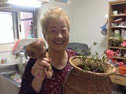 otsuchi grandma with matsutake.JPG