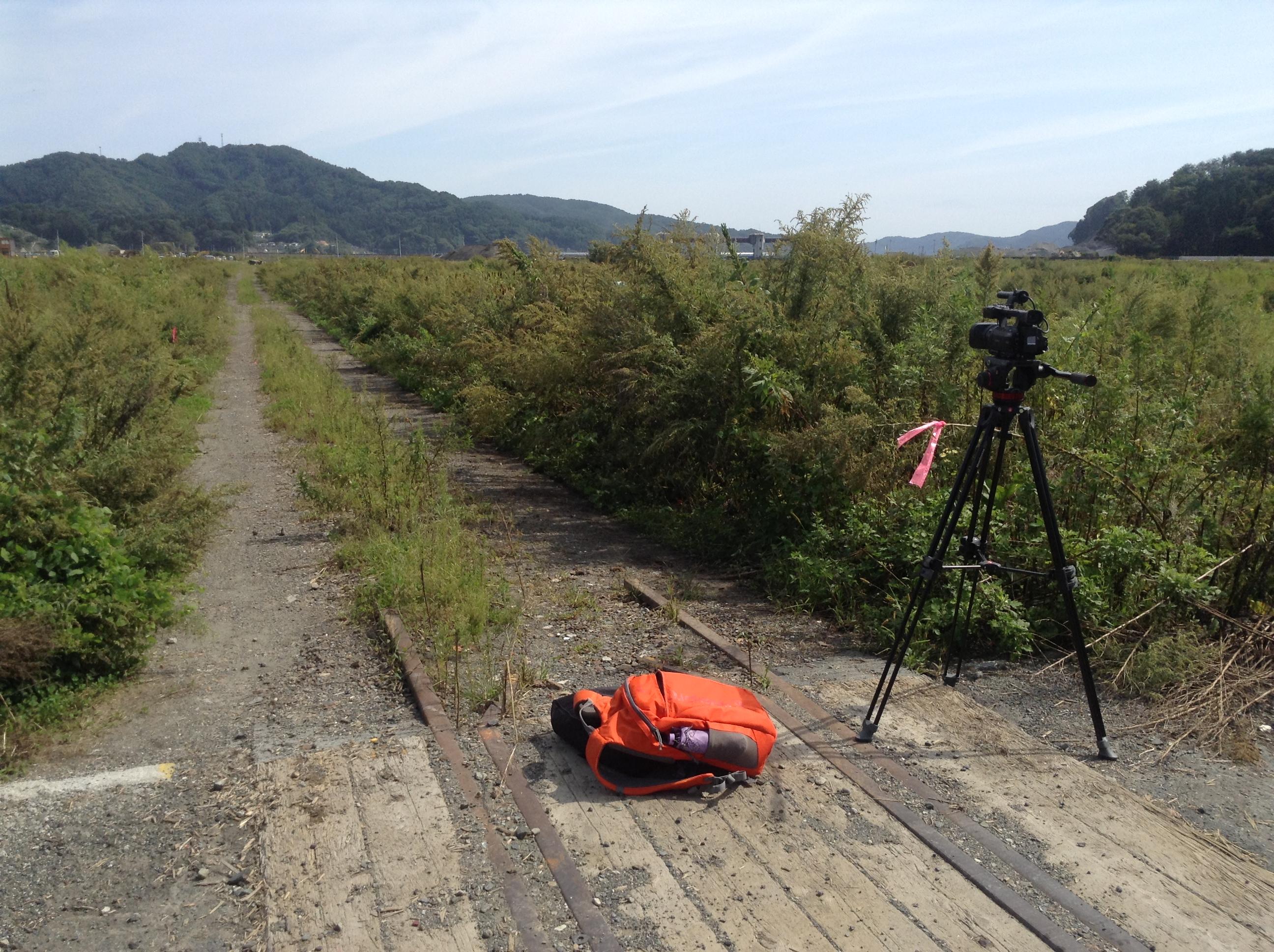 otsuchi filming the town overgrown weeds 2016.JPG
