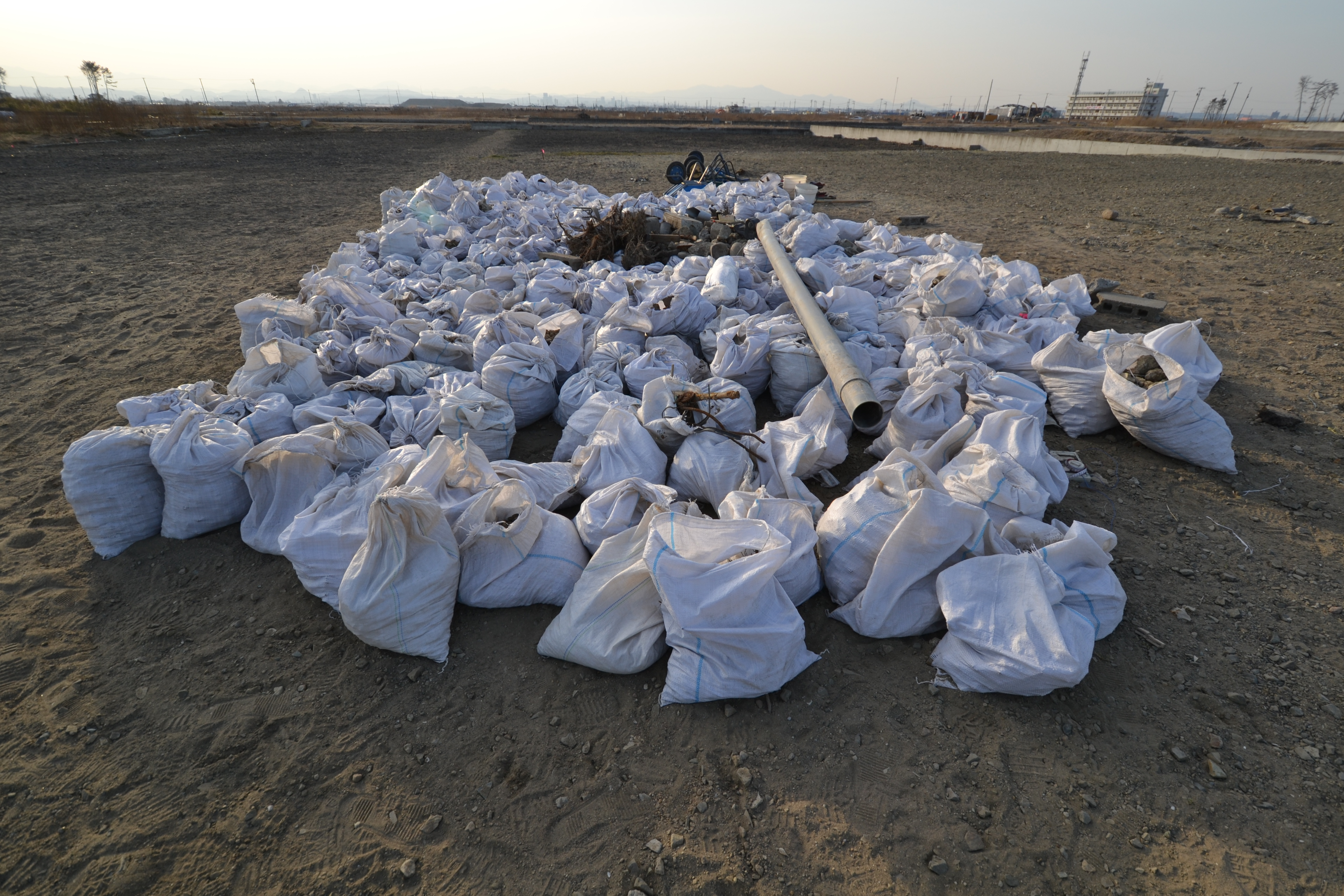 arahama bags of cleanup.JPG
