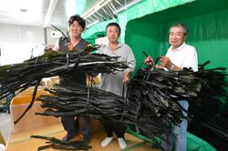 miyako wakame fishermen no fans.JPG