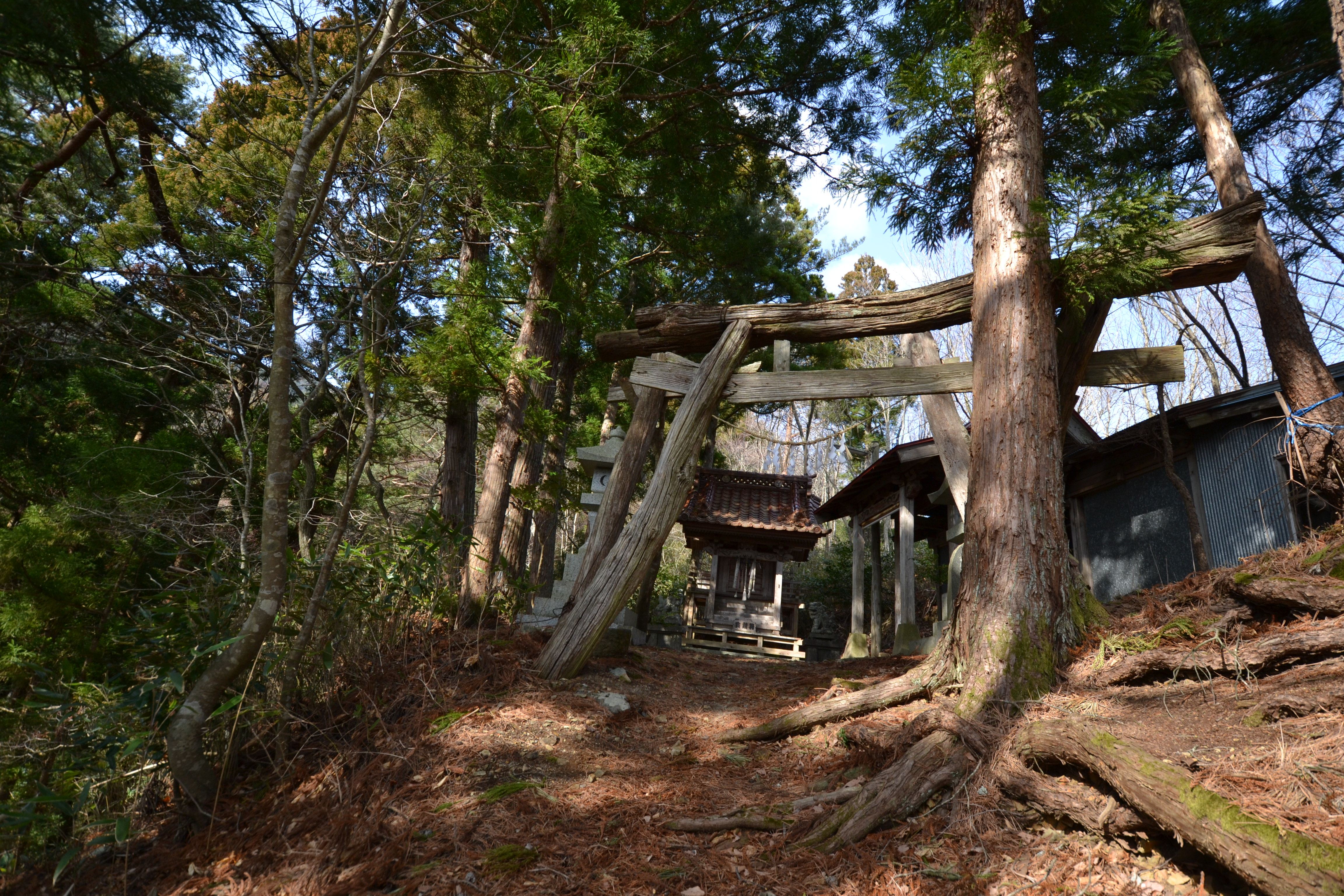 otsuchi mountaintop ancient shrine.JPG