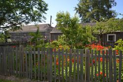 obaachan garden and house wide.JPG