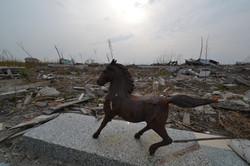 Namie Nomaoi horse survives April 2013.jpg