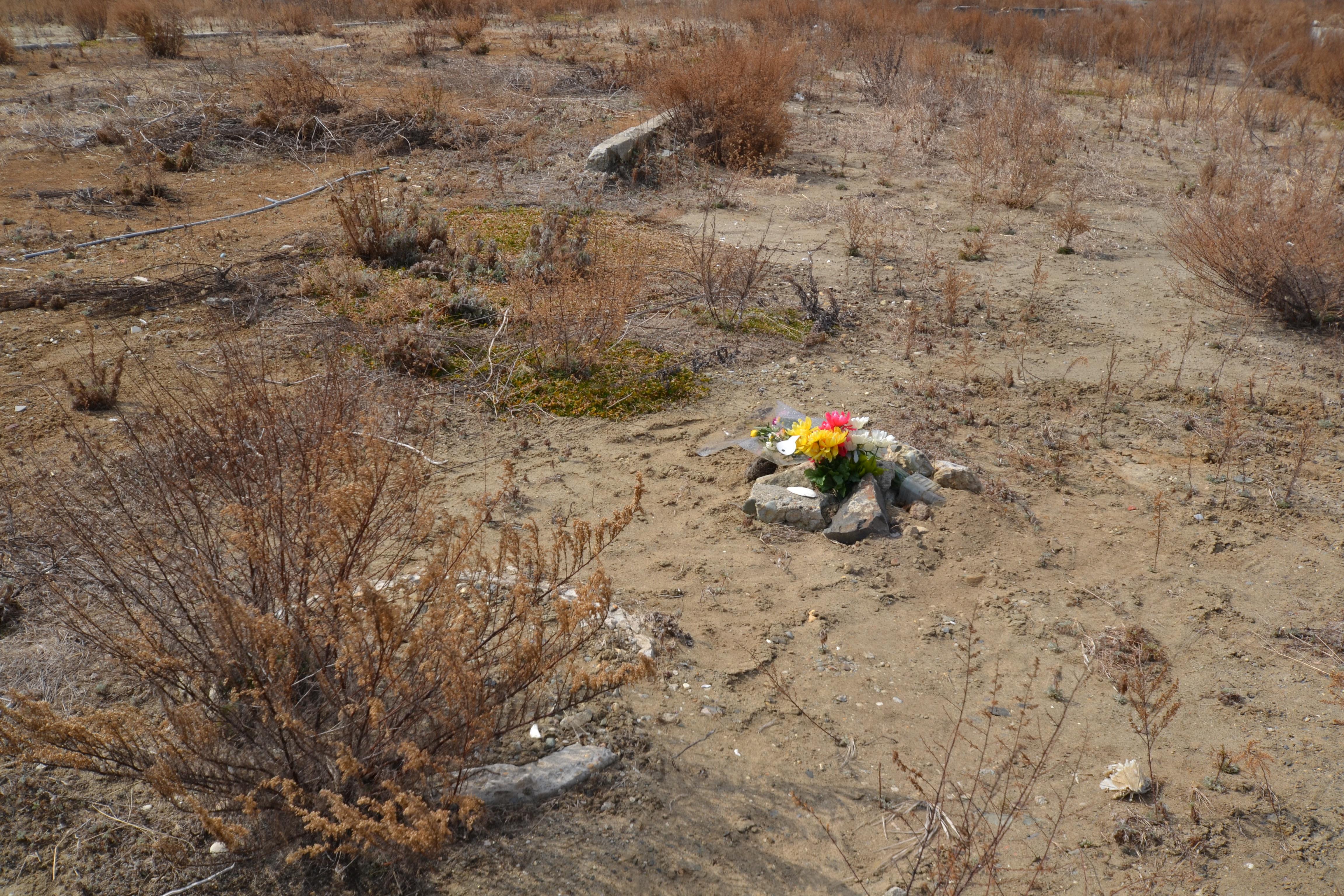 yuriage flowers left nowhere all gone.jpg