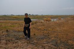 arahama oahshi field swans.JPG