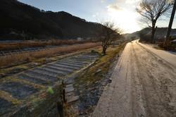 otsuchi country road up mt where survivors escaped to.JPG