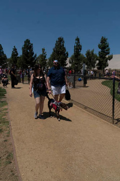 2018 0704 RPV EastView Doggie Parade Photos-02530.jpg