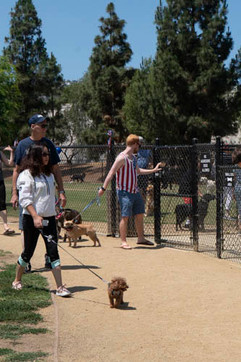 2018 0704 RPV EastView Doggie Parade Photos-02513.jpg