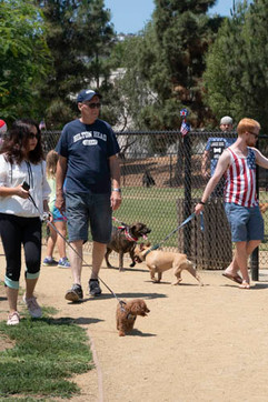 2018 0704 RPV EastView Doggie Parade Photos-02512.jpg