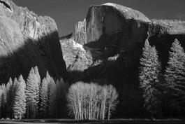 2020 01 Yosemite HalfDrome Trees IFR BW
