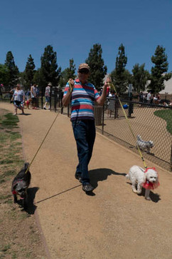 2018 0704 RPV EastView Doggie Parade Photos-02511.jpg