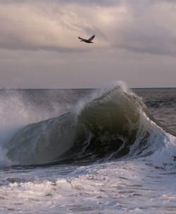 2010 0204 11X14 STORMY SEAS
