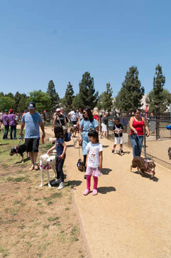 2018 0704 RPV EastView Doggie Parade Photos-02501.jpg