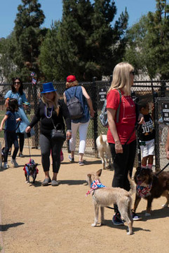 2018 0704 RPV EastView Doggie Parade Photos-02497.jpg