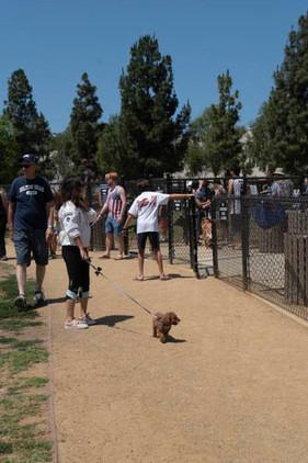 2018 0704 RPV EastView Doggie Parade Photos-02515.jpg