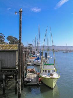MB Harbor 2007-07017