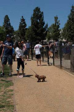 2018 0704 RPV EastView Doggie Parade Photos-02516.jpg
