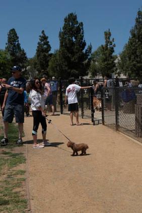 2018 0704 RPV EastView Doggie Parade Photos-02516.jpg