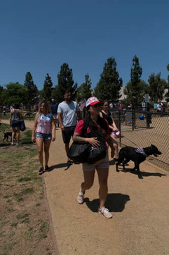 2018 0704 RPV EastView Doggie Parade Photos-02525.jpg