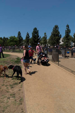 2018 0704 RPV EastView Doggie Parade Photos-02533.jpg