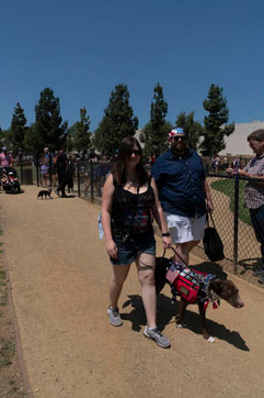 2018 0704 RPV EastView Doggie Parade Photos-02531.jpg