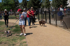 2018 0704 RPV EastView Doggie Parade Photos-02494.jpg