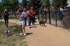 2018 0704 RPV EastView Doggie Parade Photos-02494.jpg