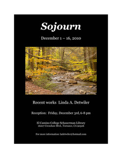 2010 Sojourn
