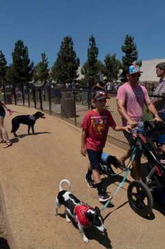 2018 0704 RPV EastView Doggie Parade Photos-02536.jpg