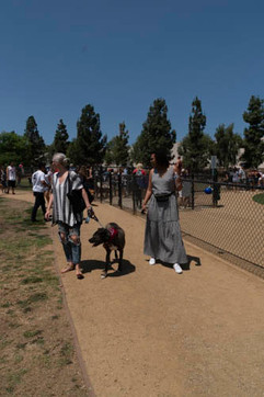 2018 0704 RPV EastView Doggie Parade Photos-02508.jpg