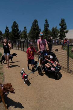 2018 0704 RPV EastView Doggie Parade Photos-02535.jpg