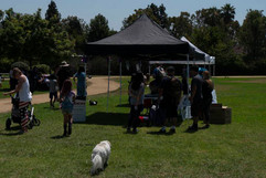 2018 0704 RPV EastView Doggie Parade Photos-02541.jpg