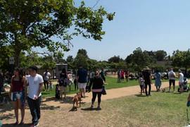 2018 0704 RPV EastView Doggie Parade Photos-02537.jpg