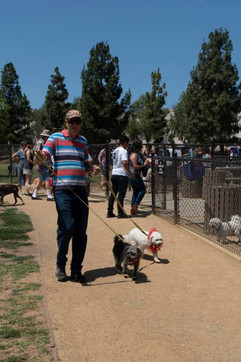 2018 0704 RPV EastView Doggie Parade Photos-02509.jpg
