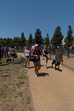 2018 0704 RPV EastView Doggie Parade Photos-02524.jpg